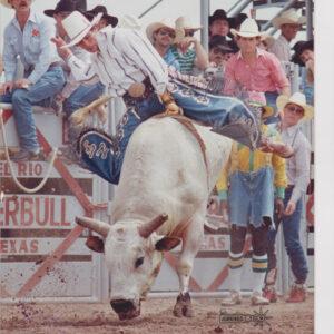 LFB lane frost brand bull ropes